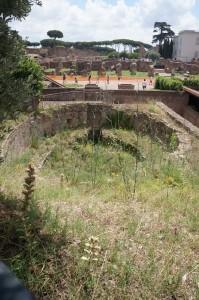Овальный бассейн дома Тибериана