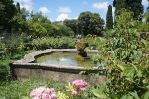Очень зеленые и цветущие сады